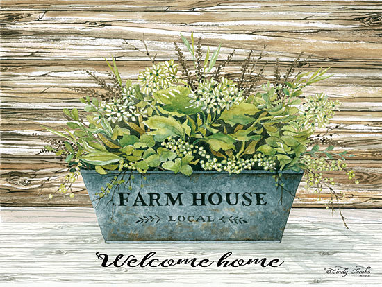 Cindy Jacobs CIN1152 - Welcome Home Farmhouse, Greenery, Galvanized Bucket, Plants from Penny Lane