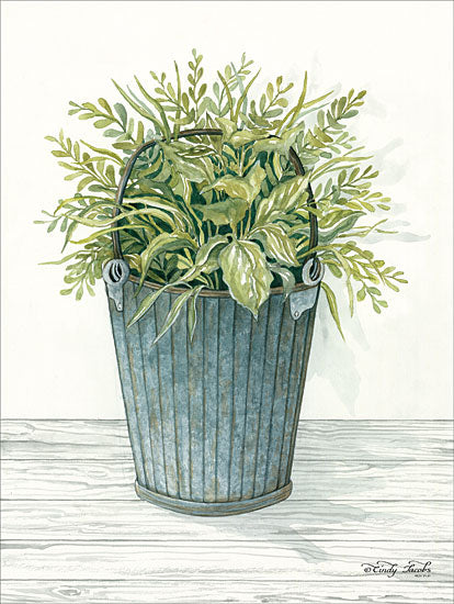 Cindy Jacobs CIN1154 - Old Bucket of Greenery Plants, Galvanized Bucket, Greenery from Penny Lane
