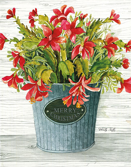 Cindy Jacobs CIN1298 - Merry Christmas Pot Holidays, Red Flowers, Flowers, Galvanized Bucket, Merry Christmas from Penny Lane