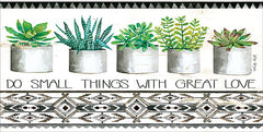 CIN1314 - Do Small Things Succulents