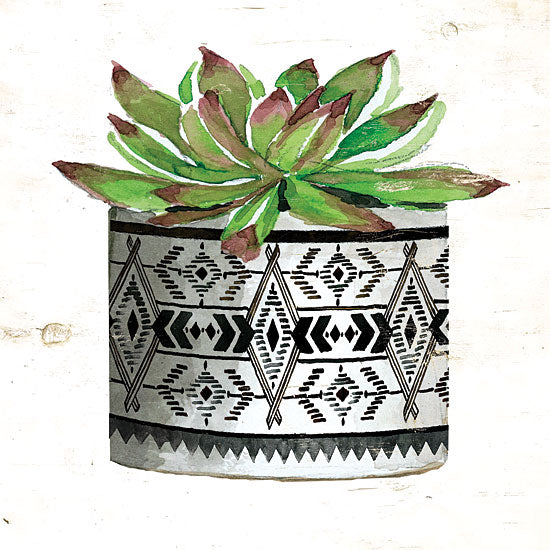 Cindy Jacobs CIN1499 - Mud Cloth Succulent III - 12x12 Succulents, Mud Cloth Pot, Southwestern, Cactus from Penny Lane