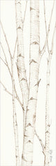 CIN902 - Birch Trees II