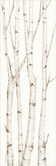 CIN903 - Birch Trees III