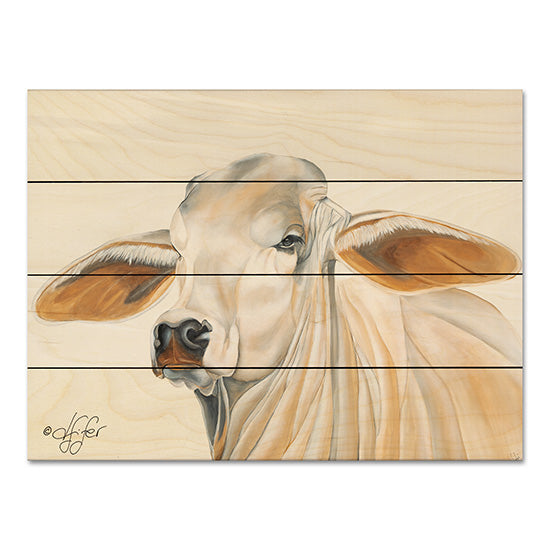 Diane Fifer DF106PAL - Wrinkles Can Be Beautiful Cow, Portrait, Farm from Penny Lane