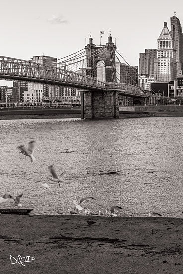 Donnie Quillen DQ136 - Suspension Bridge I Suspension Bridge, Cincinnati, Ohio, Bridge, Photography, Birds, Urban from Penny Lane