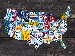 HALL308C - USA License Plate Map - 16x12
