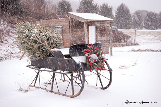 Irvin Hoover HOO101 - HOO101 - Grandpa's Sleigh - 18x12 Sleigh, Winter, Snow, Christmas Tree, Christmas Tree Farm from Penny Lane
