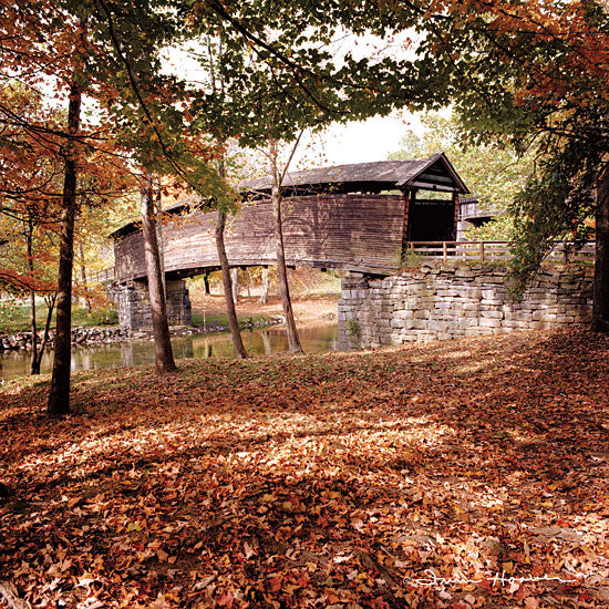 Irvin Hoover HOO102 - HOO102 - Humpback Fall - 12x12 Covered Bridge, Photography, Trees, Leaves, Landscape from Penny Lane