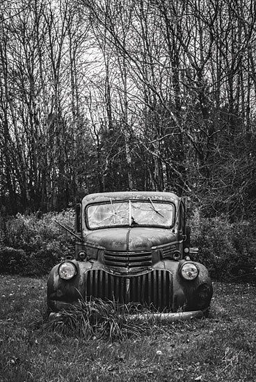 Justin Spivey JDS204 - Bumper in Weeds - Car, Black & White, Field, Trees, Antiques from Penny Lane Publishing