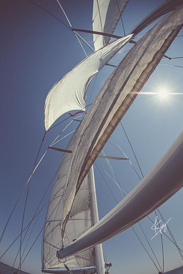 Justin Spivey JDS215 - JDS215 - Clear Sailing - 12x18 Sailing, Photography, Coastal, Sailboat, Hobbies from Penny Lane