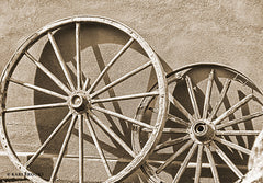 KARI123 - Like a Wagon Wheel - 18x12