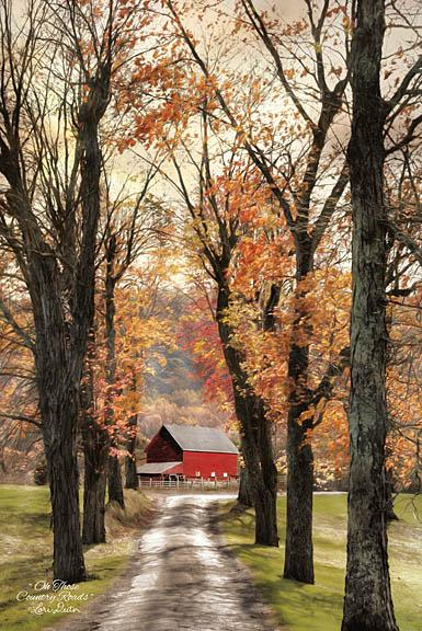Lori Deiter LD1153 - On Those Country Roads - Road, Barn, Trees, Autumn, Farm from Penny Lane Publishing