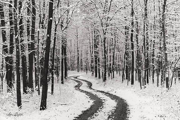 Lori Deiter LD1177 - Snowy Road - Snow, Road, Trees, Black & White from Penny Lane Publishing