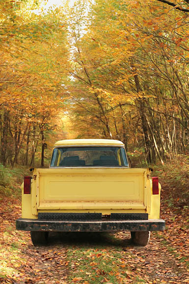 Lori Deiter LD1194 - The Season of Color - Truck, Autumn, Antiques, Forest from Penny Lane Publishing
