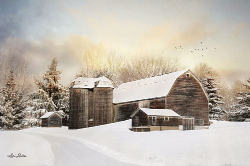 Lori Deiter LD1198 - The Color of Winter - Barn, Snow, Winter, Farm, Pine Trees from Penny Lane Publishing