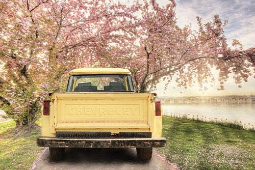 Lori Deiter LD1200 - Spring's Embrace - Chevrolet Truck, Truck Bed, Flowering Pink Trees, Road from Penny Lane Publishing