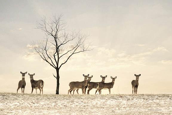Lori Deiter LD1216 - Doe a Deer - Deer, Snow, Winter, Field from Penny Lane Publishing