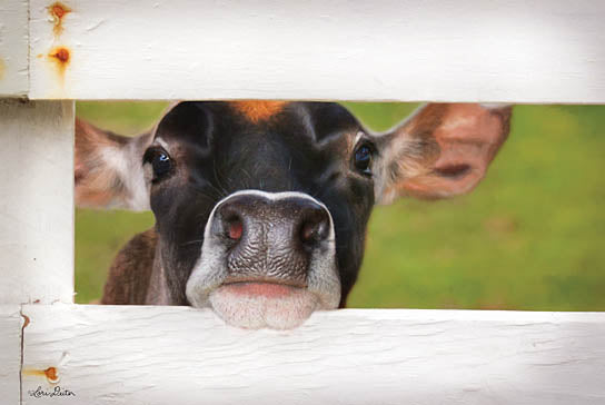 Lori Deiter LD1223 - Cow at Fence - Cow, Fence, Baby from Penny Lane Publishing