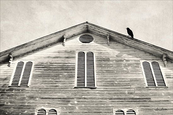 Lori Deiter LD1273 - Fort Halifax Crow Barn, Farm, Black & White, Rustic, Crow from Penny Lane