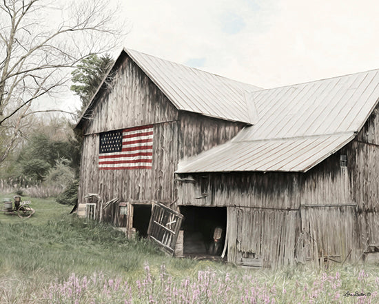 Lori Deiter LD1288 - The American Farmer Barn, Farm, American Flag, Rustic from Penny Lane