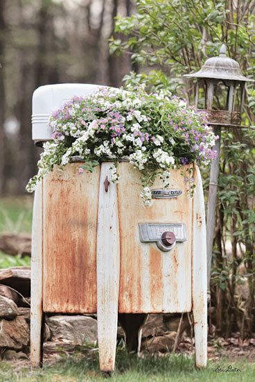 Lori Deiter LD1352 - Overflowing Antique, Washing Machine, Laundry, Flowers from Penny Lane