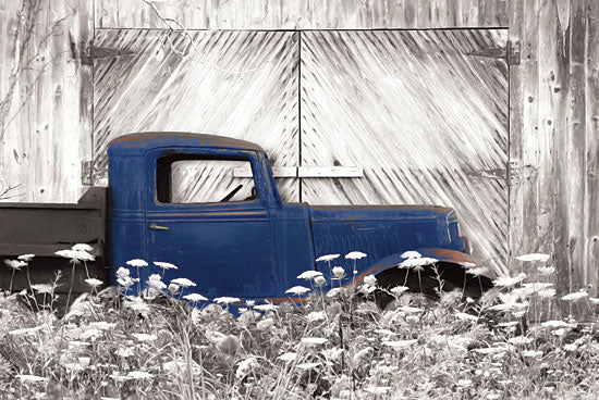 Lori Deiter LD1364 - Age is a Work of Art Truck, Barn Door, Wildflowers from Penny Lane