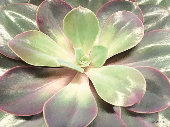 Lori Deiter LD1368 - Glowing Succulent I Succulents, Cactus, Flowers, Southwestern from Penny Lane