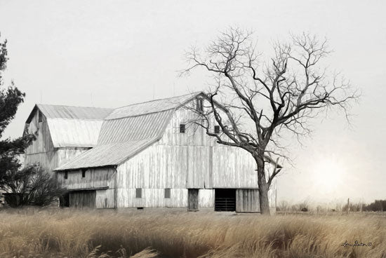 Lori Deiter LD1407 - Ohio Fields I Farm, Barn, Fields, Black & White, Landscape from Penny Lane