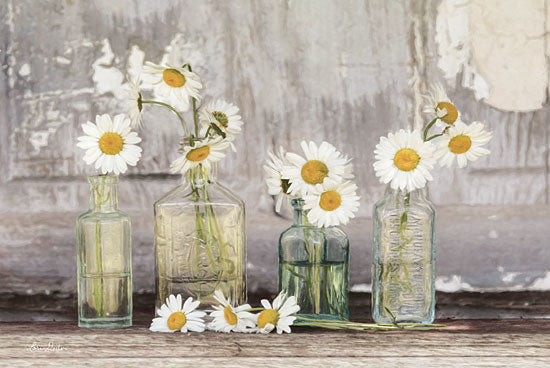 Lori Deiter LD1426 - He Loves Me Flowers, White, Daisies, Glass Bottles, Blooms from Penny Lane