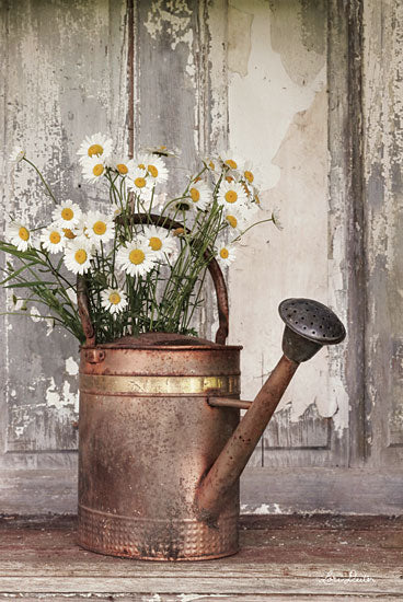Lori Deiter LD1427 - The Friendliest Flowers Watering Can, Copper, Antique, Garden, Daisies from Penny Lane