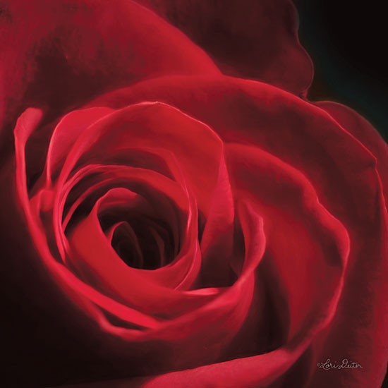 Lori Deiter LD1439 - The Red Rose I Rose, Red, Portrait, Closeup from Penny Lane