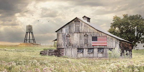 Lori Deiter LD1540 - Rural Virginia Barn - 18x9 Barn, Country, Farm, American Flag, Field from Penny Lane