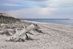 LD1547 - Outer Banks Beach  - 18x12