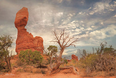 LD1550 - Arches National Park II - 18x12
