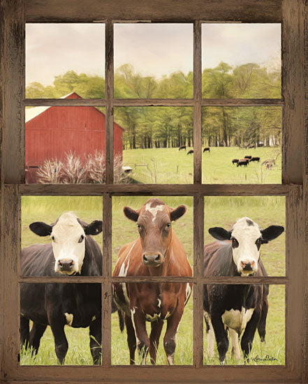 Lori Deiter LD1603 - Three Moo View - 12x16 Window, Farm, Cow, Photography from Penny Lane