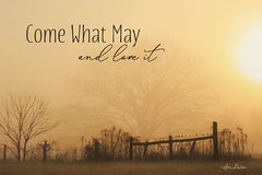 LD1642 - Come What May   - 18x12