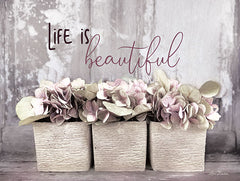 LD1682GP - Life is Beautiful