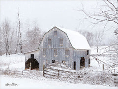 LD1699GP - Blue Tinted Barn
