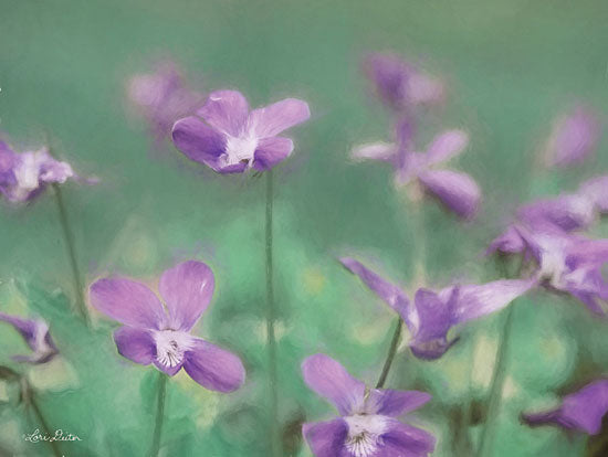 Lori Deiter LD1803 - LD1803 - Wild Violets - 16x12 Floral, Photography, Violets, Meadow from Penny Lane