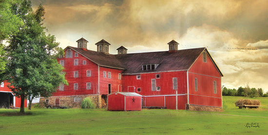 Lori Deiter LD527 - Aging Gracefully  Farm, Barn, Landscape from Penny Lane