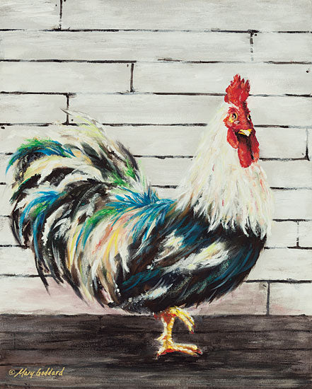 Mary Goddard MG103 - Woodstock Rooster, Farm, Portrait  from Penny Lane