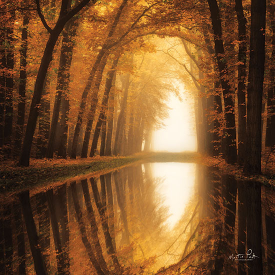 Martin Podt MPP414 - Lochem Reflections Trees, Path, Reflections, Autumn, Sun from Penny Lane