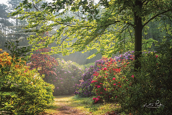 Martin Podt MPP443 - Garden of Eden Trees, Path, Flowers, Wildflowers, Garden from Penny Lane
