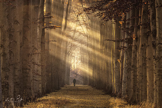 Martin Podt MPP444 - Walking the Dog Again Birch Trees, Trees, Forest, Figure from Penny Lane
