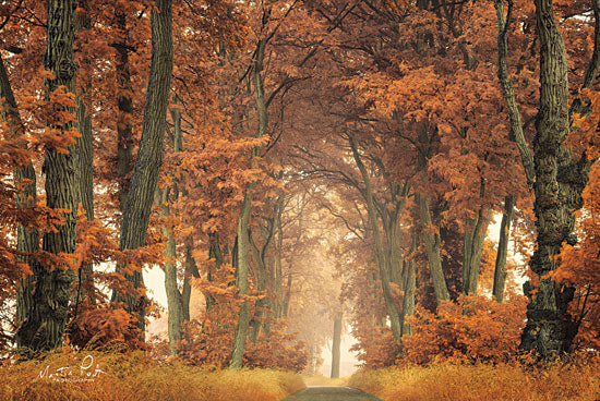 Martin Podt MPP466 - Follow Your Own Way Autumn, Trees, Path, Forest, Archway, Sunlight from Penny Lane