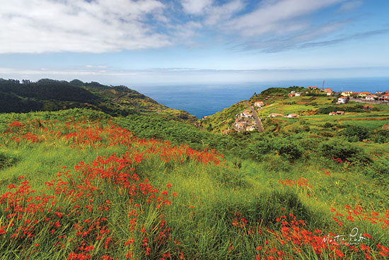 Martin Podt MPP468 - Flowers of Madeira Mountains, Madeira, Flowers, Wildflowers, Red, Village from Penny Lane