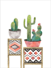 MS131 - Cactus Tables with Coral