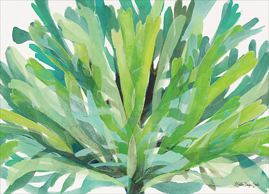 Stellar Design Studio SDS219 - SDS219 - Tropical Sea Grass 1 - 16x12 Sea Grass, Seaweed, Tropical from Penny Lane
