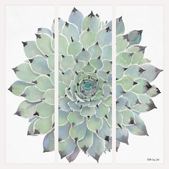 Stellar Design Studio SDS235 - SDS235 - Agave Triptych 1 - 12x12 Triptych, Agave, Plant, Tropical from Penny Lane