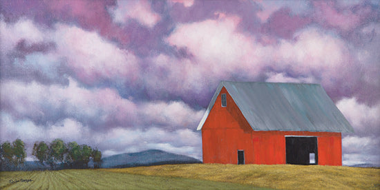 Tim Gagnon TGAR139 - TGAR139 - Rural Skies - 18x9 Barn, Farm Life, Countryside from Penny Lane